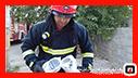 عملیات 125 آتش نشانان در پی تجمع زنبور عسل/آتش نشانی رشت